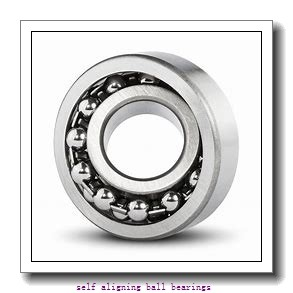 SKF 1216/C3  Self Aligning Ball Bearings