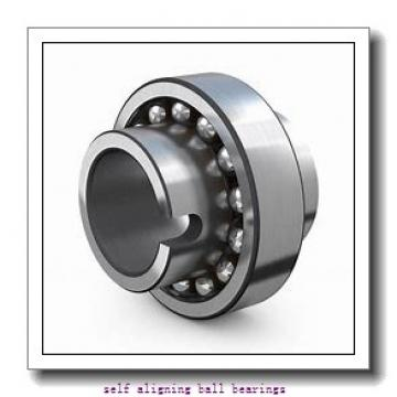 NSK 2202-2RSTN  Self Aligning Ball Bearings